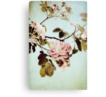 a beautiful mess Canvas Print