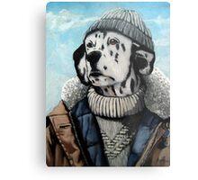MAN OF THE SEA - Dalmatian dog portrait  Metal Print