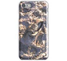 Mud iPhone Case/Skin