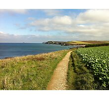 Coastal Path To Trevone Bay Photographic Print