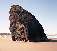 Sea Stack - Meyer Creek Beach - Oregon by Harry Snowden