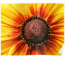 Floral Chocolate Cake Poster