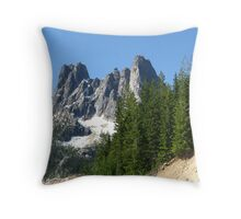 This Planet We Call Home Throw Pillow