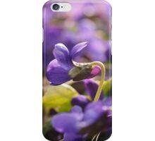Violets - Flowers iPhone Case/Skin