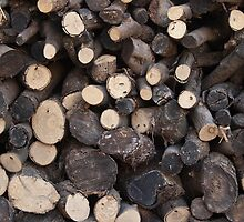 Woodpile by GysWorks