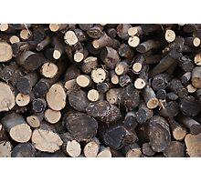 Woodpile Photographic Print