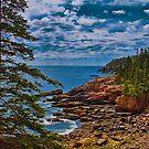 USA. Maine. Acadia National Park. by vadim19