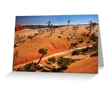 Bryce Canyon Walk Greeting Card