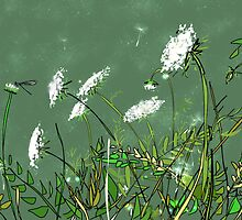 Queen Anne's  Lace and Dragon Fly by Suzanne Clements