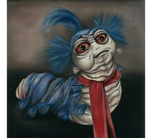 Labyrinth Worm - Oil Painting  Photographic Print