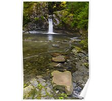 Darling Creek - West Coast Trail, Vancouver Island, Canada Poster