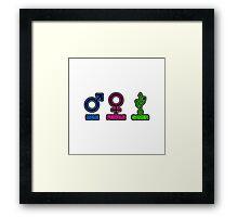 Male, Female, Gamer Framed Print