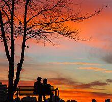 Sunset Dreams by Wendi Donaldson