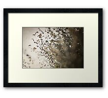 :Relax Your Mind: 2 Framed Print