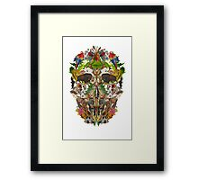 Ancient Skull Framed Print