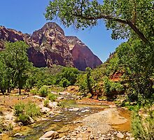 Virgin River View, Zion National Park, Utah, USA by TonyCrehan