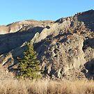 Clay Bluffs by field9