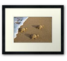 Three Baby Turtles - Wanda Beach - Sydney Framed Print