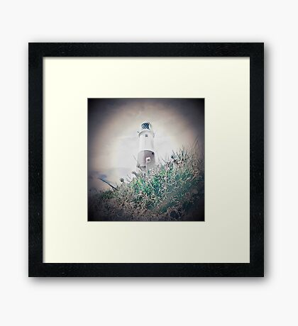 Portland Bill Flowers Framed Print