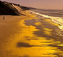 Golden Beach Sunrise by Bryan Shane