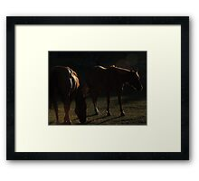 Equine in Silhouette Framed Print