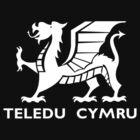 Teledu Cymru: Wales West and North by northstardesign