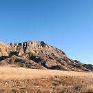 Clay Bluff Landscape by field9