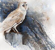 Night owl by Ruth Nolan