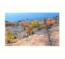 Grand Tetons Aspens Art Print