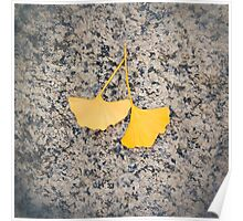 Ginkgo Poster