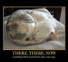 Nice Nap by Ginny Schmidt