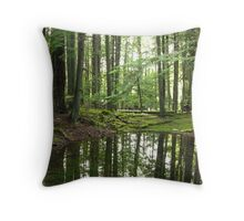 Forest Pond Reflections Throw Pillow