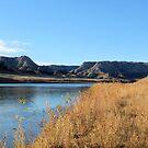 Riverside  by field9