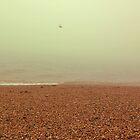 Brighton by Niralee Modha