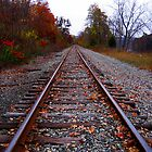 Train Tracks Going Forever by AlexTorres