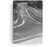Driver Canvas Print
