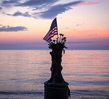 Patriotic Joe by Mikell Herrick