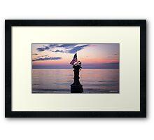 Patriotic Joe Framed Print