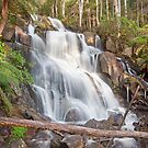 Toorongo Falls by Travis Easton