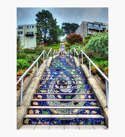 Mosaic Steps Photographic Print