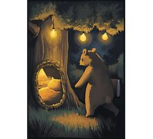 little bear Photographic Print
