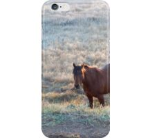 Wrong side of the fence iPhone Case/Skin