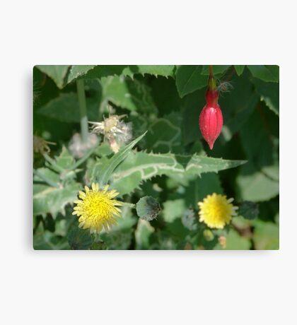 Flower Salad Canvas Print