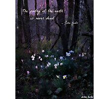 The Poetry Of The Earth Is Never Dead Photographic Print