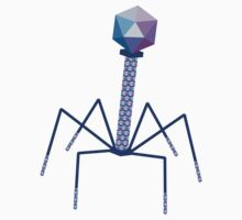 Bacteriophage by Gabby  Ortman