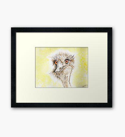 Silly EMU Framed Print