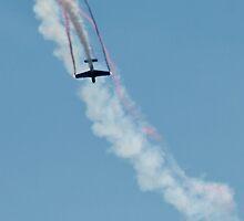 Stunt Plane. by Lindsay Osborne