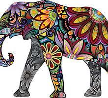 Colourful Elephant Art by DIMIART