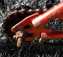 Rusty Red Bike II by Hannah Ruth