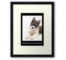 Happiness is a new puppy Framed Print